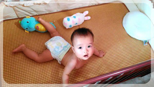 新竹藍印子的採買記–為了草原熊的床~~~