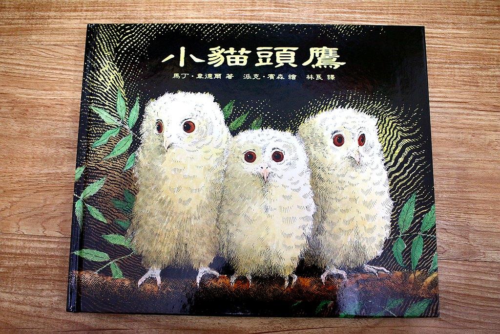 【情緒繪本】從小貓頭鷹一書來探討孩子的分離焦慮時期
