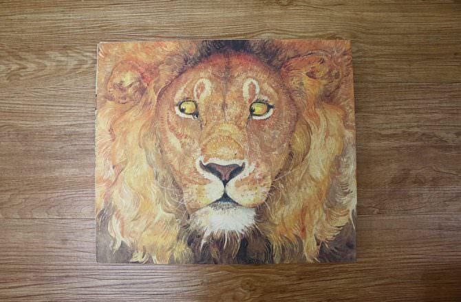 【無字書繪本推薦】 獅子與老鼠 伊索寓言–傑瑞平克尼 Jerry Pinkney
