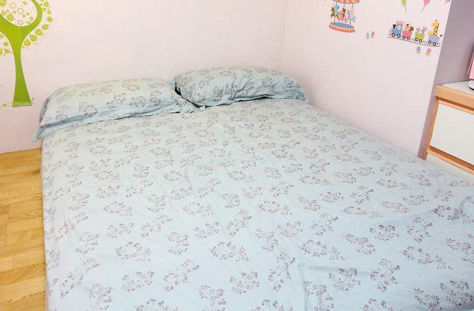 【團購】日本IRIS除塵蟎機[大拍]3.5 版現正開團中~~遠離過敏源,給全家人一個舒適乾淨的睡眠環境