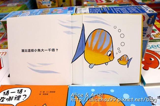 IMG_9071_副本.jpg