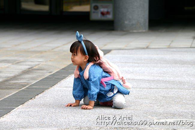 IMG_3156_副本.jpg